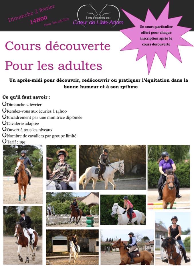 Cours découverte équitation adulte L'Isle Adam (95)